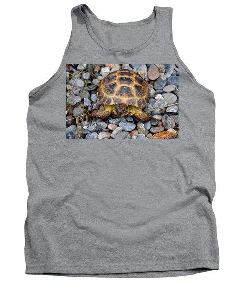 Female Russian Tortoise Tank Top