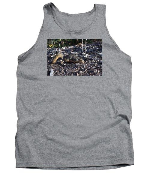 Squirrel Pprh Woodland Park Co Tank Top