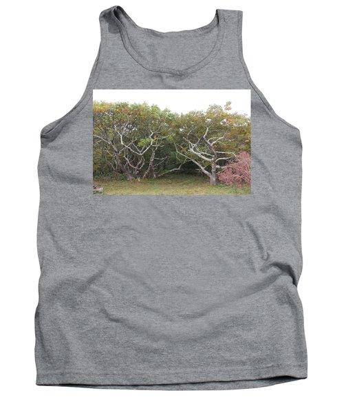 Forest Entry Tank Top