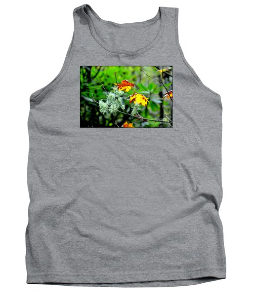 Forest Little Wonders Tank Top by Tanya Searcy