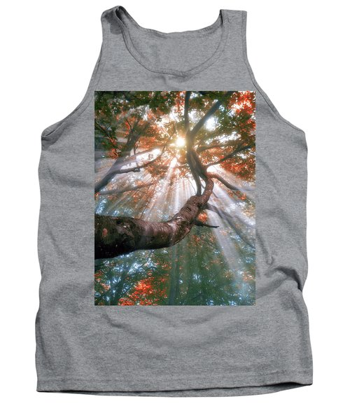 Forest With Fog And Sun Rays Tank Top