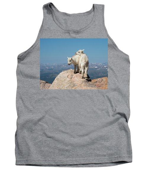 Frisky Mountain Goat Babies Tank Top