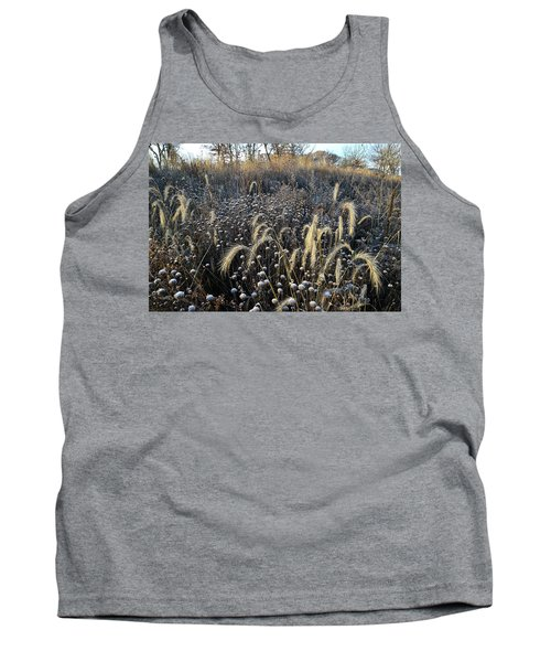 Frosted Foxtail Grasses In Glacial Park Tank Top