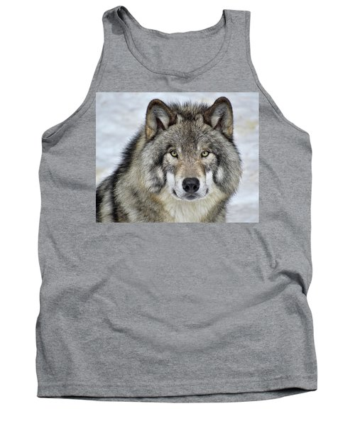 Tank Top featuring the photograph Full Attention  by Tony Beck