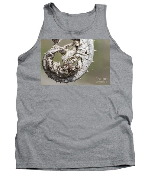 Tank Top featuring the photograph Furrow Orb Weaver On A Dry Thisle Leaf by Jivko Nakev
