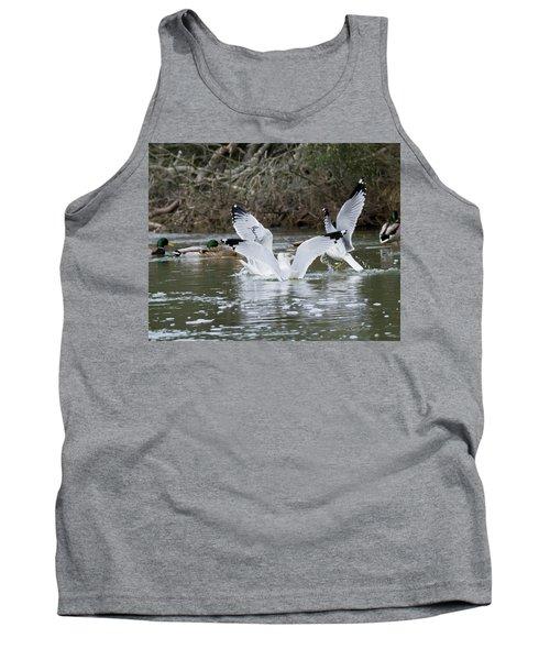 Gathering Of Egrets Tank Top