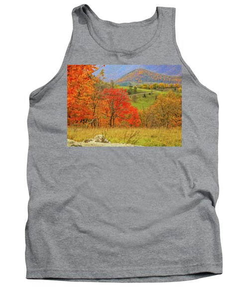 Germany Valley Dressed In Autumn Tank Top