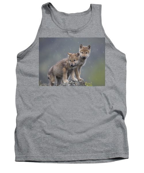 Gray Wolf Canis Lupus Pups In Light Tank Top