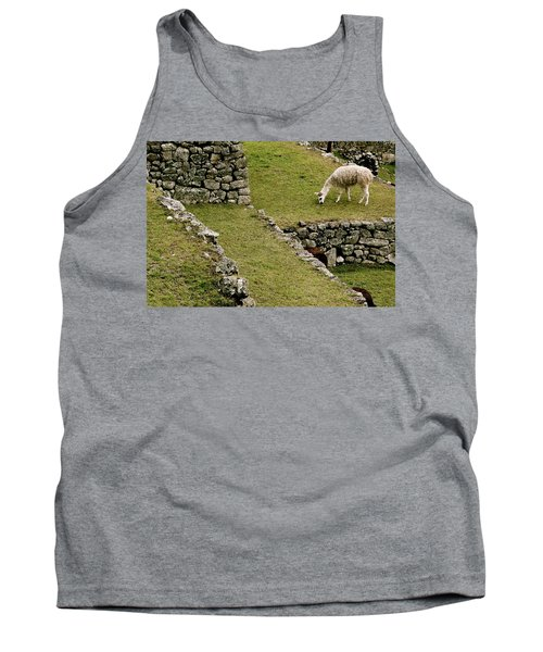 Grazing In Machu Picchu Tank Top