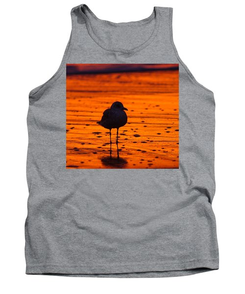 Gull Caught At Sunrise Tank Top