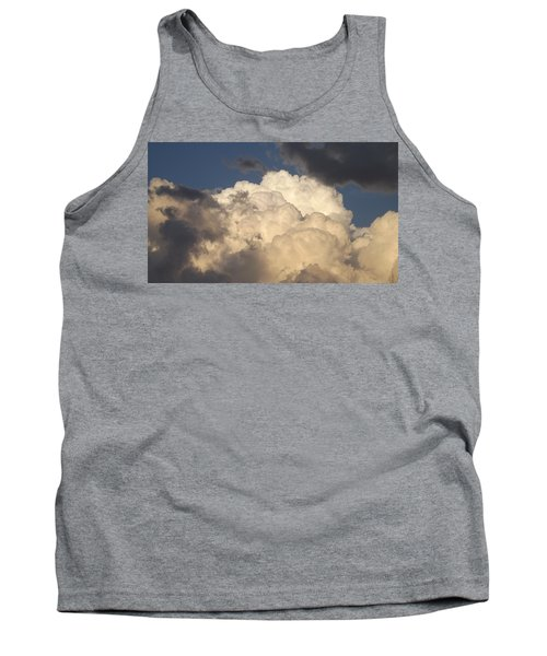Home Of The Gods Tank Top by Don Koester