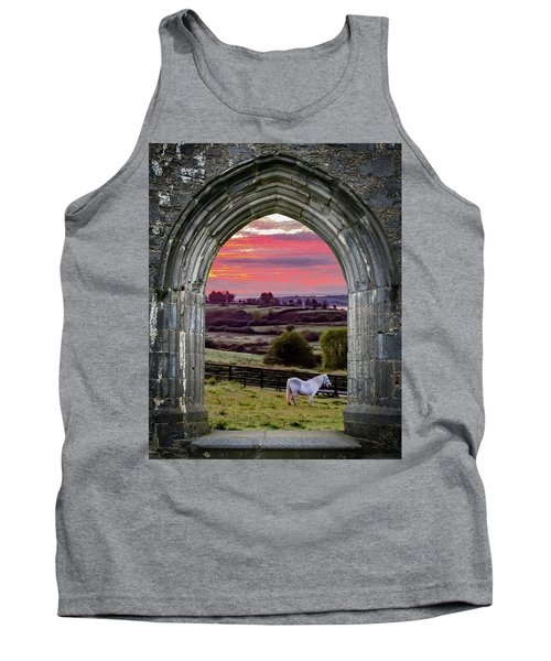 Tank Top featuring the photograph Horse At Sunrise In County Clare by James Truett