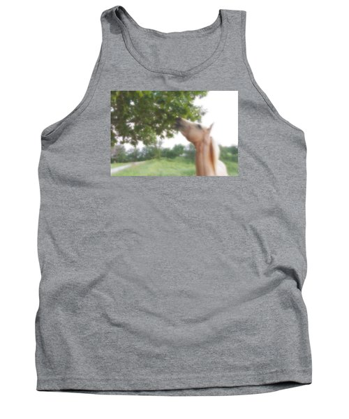 Horse Grazes In A Tree Tank Top by Jana Russon
