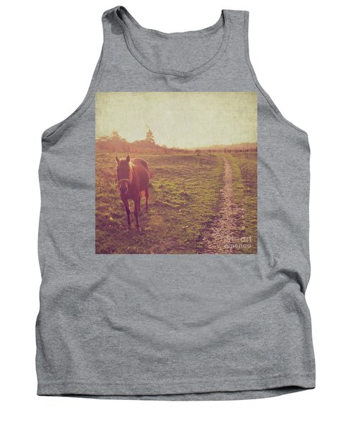 Horse Tank Top by Lyn Randle