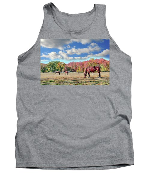 Horses Grazing At A Stable In Maryland Tank Top