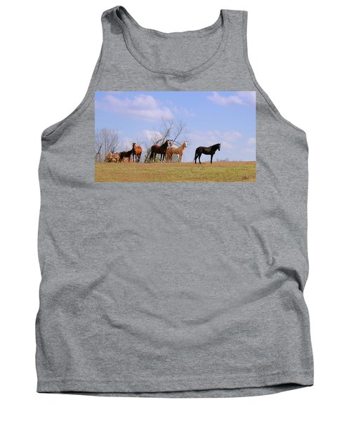Tank Top featuring the photograph Horses On The Hill by Bonnie Willis