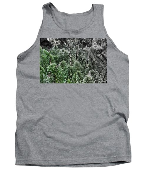 Horsetail Dewpoint Tank Top