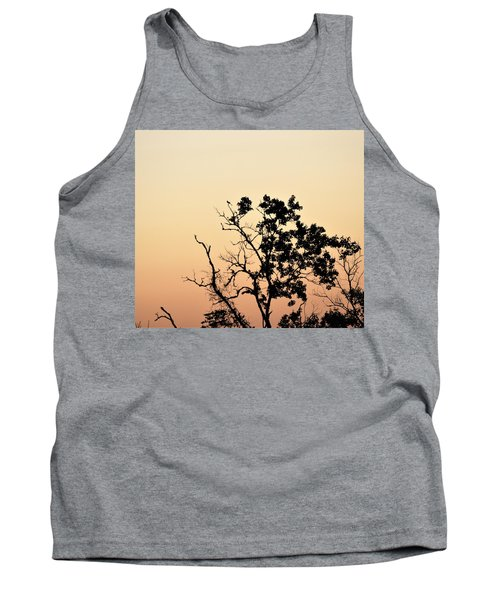 Hush Little Baby Tank Top by John Glass
