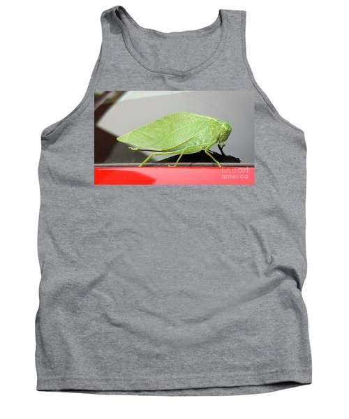 Katydids- Bush Crickets Tank Top