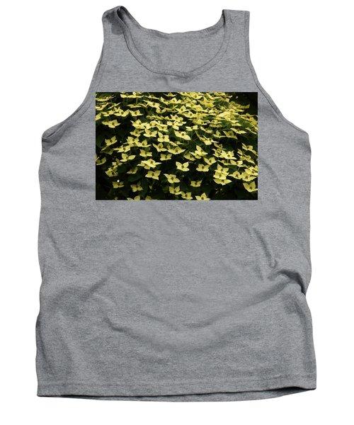 Kousa Dogwood Blooms Tank Top