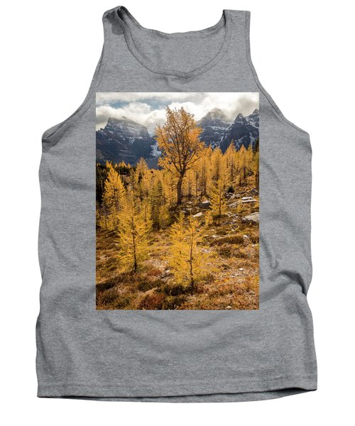 Larch Family Tank Top