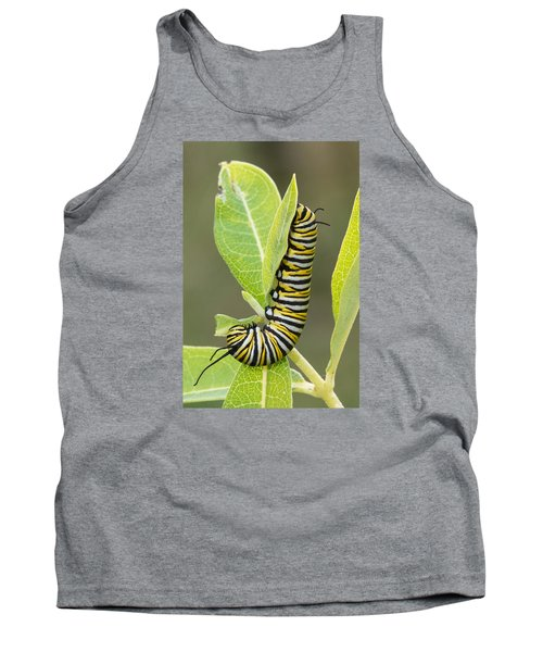 Late Season Monarch Tank Top