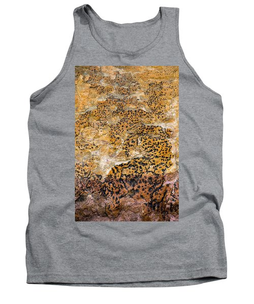 Tank Top featuring the photograph Lichen Abstract, Bhimbetka, 2016 by Hitendra SINKAR