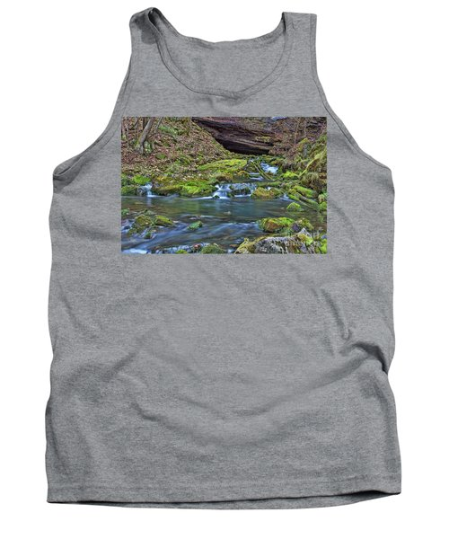 Maiden Springs Tank Top
