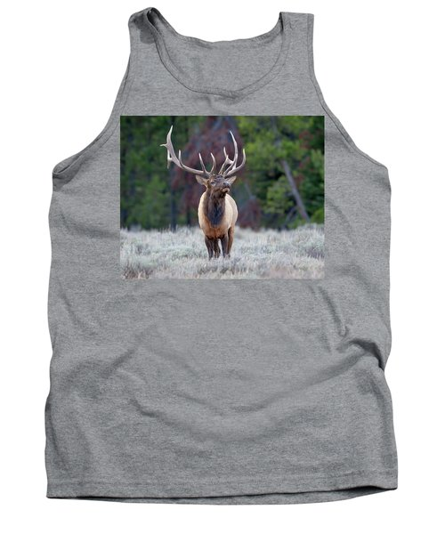 Majestic Bull Elk Tank Top by Jack Bell