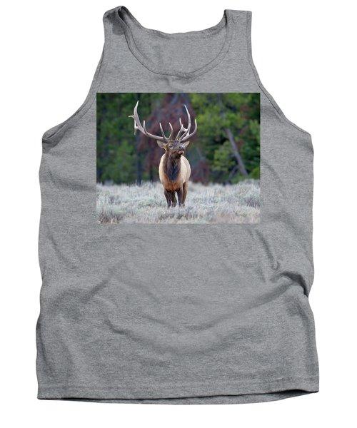 Majestic Bull Elk Tank Top