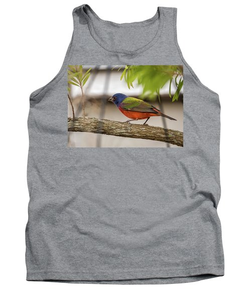 Male Painted Bunting Tank Top
