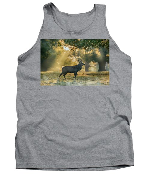 Tank Top featuring the photograph Misty Walk by Scott Carruthers