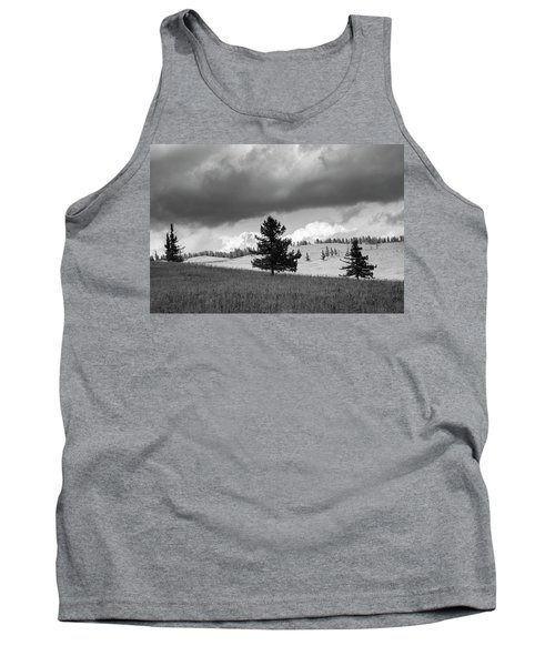 Moody Meadow, Tsenkher, 2016 Tank Top