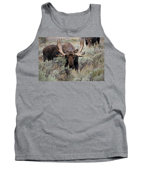 Moose In The Sage Tank Top
