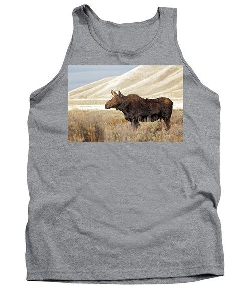 Morning Moose Tank Top
