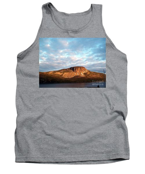 Mottled Sky Of Late Spring Tank Top by Barbara Griffin