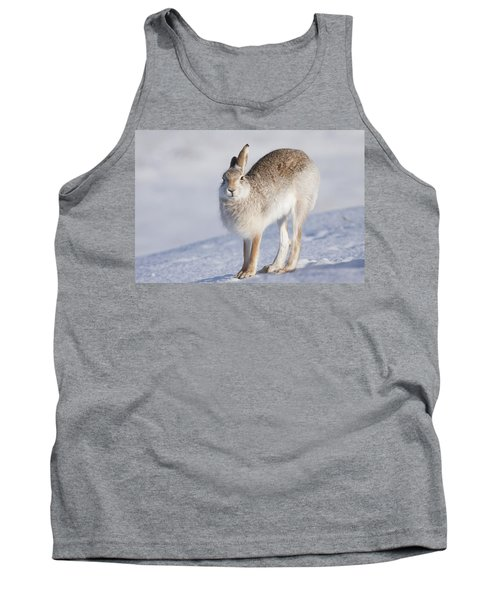 Mountain Hare In The Snow - Lepus Timidus  #2 Tank Top