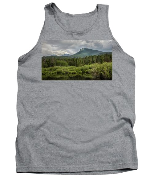 Mountain View From The Marsh Tank Top