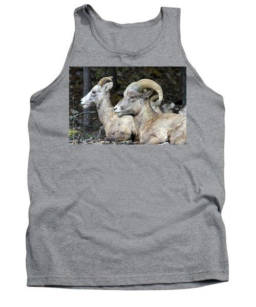 Mt Sheep  Tank Top