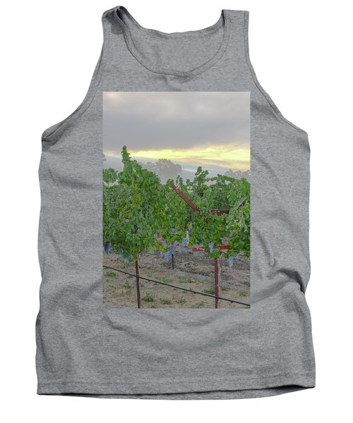 Napa Valley At Dawn Tank Top