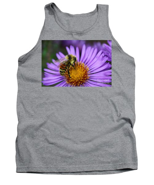 New England Aster And Bee Tank Top by Steve Augustin