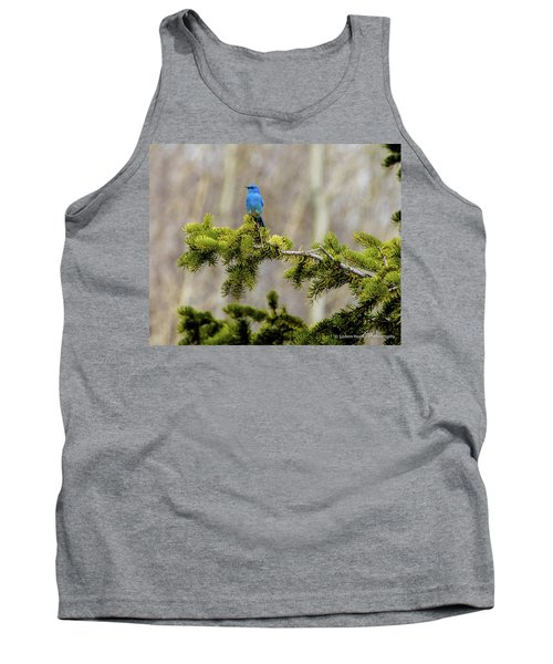 Notice The Pretty Bluebird Tank Top