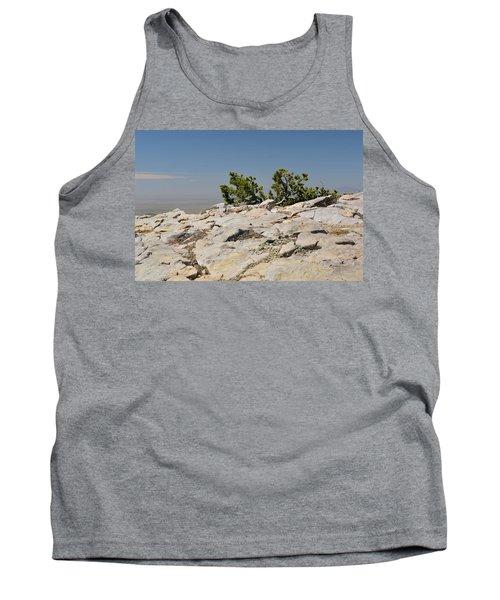 On Top Of Sandia Mountain Tank Top