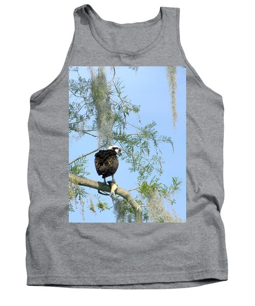 Osprey With A Fish Tank Top by Chris Mercer