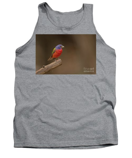 Painting The Hill Country Tank Top