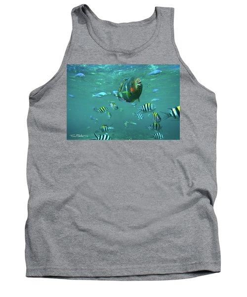 Parrot Fish Tank Top
