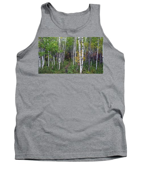 Path In The Woods 5 Tank Top