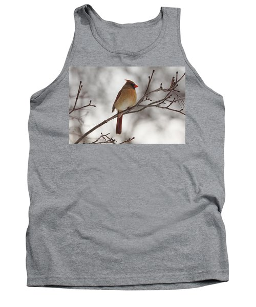 Perched Female Red Cardinal Tank Top