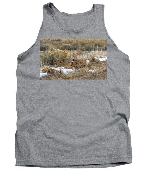 Pheasant Glory Tank Top