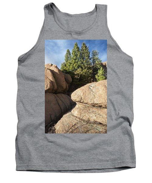 Pines In Granite Tank Top